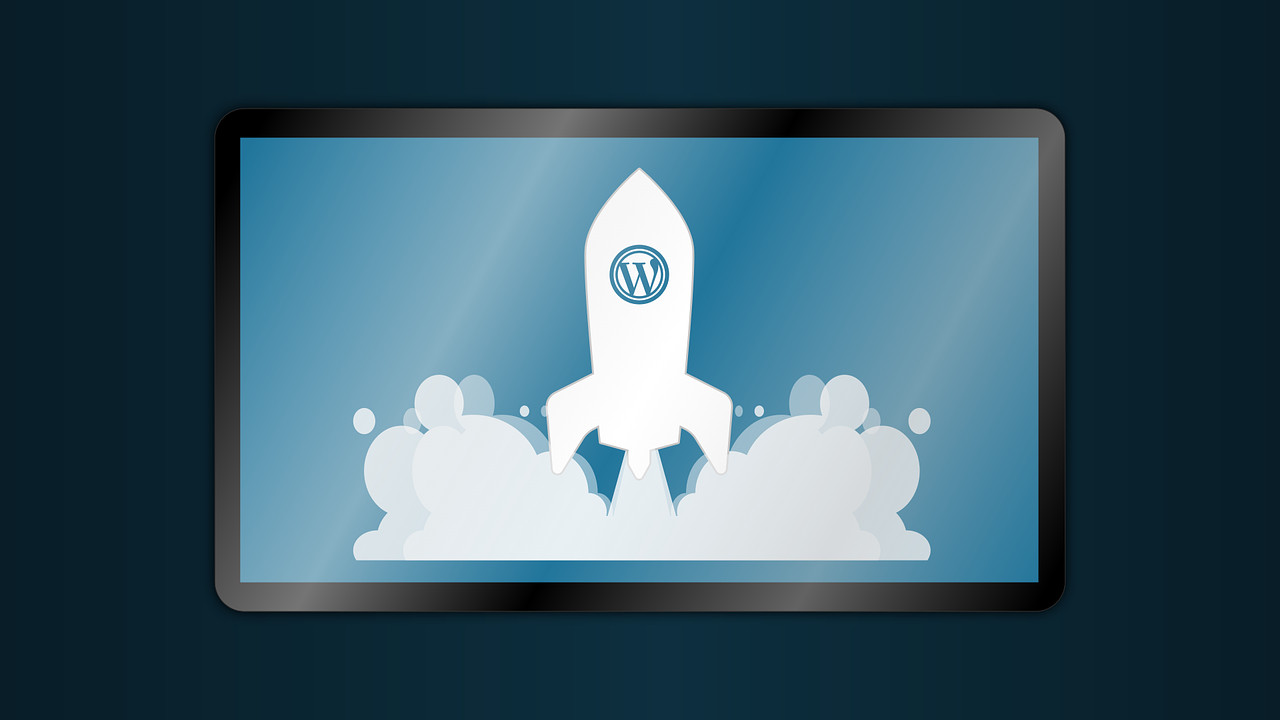 WordPress Plugins For SE Optimization