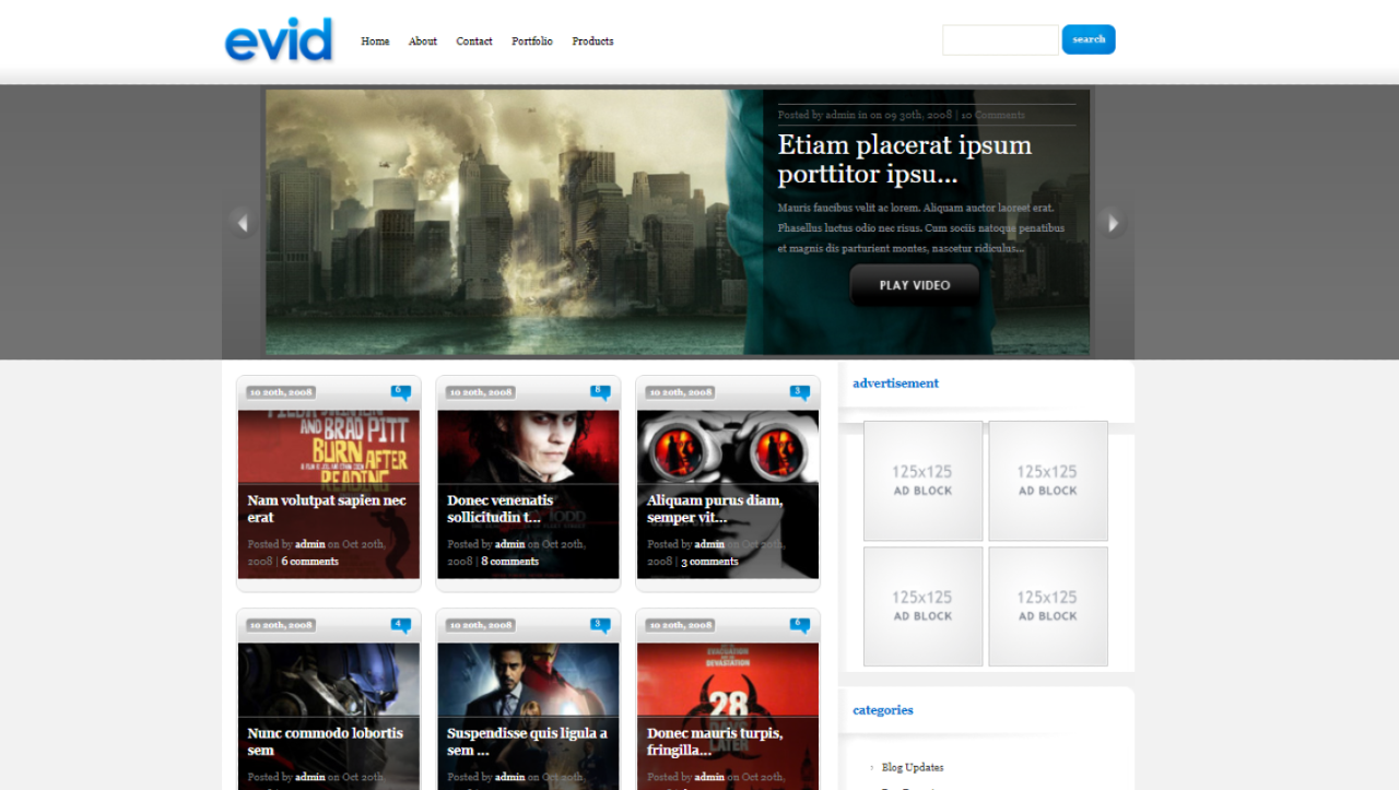 Read more about the article eVid WordPress Theme
